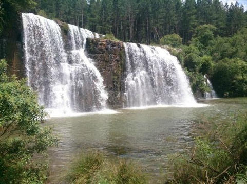 Forrest Falls  (distance from Lodge: 11km)