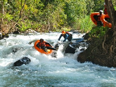 River Rafting    https://www.tours-tickets.co.za/on_the_water.html